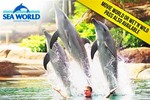 [QLD] 1 Day Passes to: Sea World or Movie World - $39.50, or Wet 'N' Wild - $32 @ Scoopon