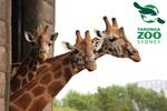 [NSW] Taronga Zoo Annual Pass and Animal Adoption for $80.10 @ Scoopon