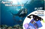 Dive Certification $125 with a few freebies (Sydney)