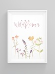 Get 25% off Kids and Home Prints and Banners at Studio Bowerbird