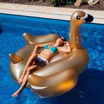 Giant Inflatable Flamingo $29.99 + $5 Shipping @ Inflatique