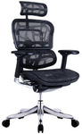 Ergohuman V2 Plus Deluxe Full Mesh Office Chair (Black & Grey) $549 + Delivery @ Temple & Webster
