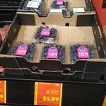 Blueberries 125g Punnet $1.89 @ ALDI