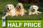 Exetick Flea & Tick Prevention for Dogs 6 Pack $25.00 – Half Price with Delivery Included