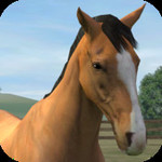 My Horse for iOS Free Today