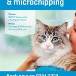 Free Cat Desexing & Microchipping from RSPCA (Mt. Alexander VIC Residents)