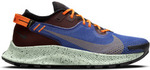 Men's Nike Pegasus Trail 2 GORE-TEX Trail Running Shoes $169.95 (RRP $240) Delivered @ Footlocker