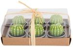 Mini Cactus Candles 6pk $15.45 USD Delivered @ Sophie's Select
