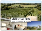 Pay $249 for two nights for two people at Morning Sun Vineyard, package valued at $580. (VIC)