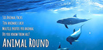 [Android] Free - Animal Round (was $1.69) - Google Play