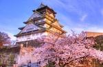 Flights to Toyko & Osaka Return from Gold Coast $444, Melb $479, Perth $515, Sydney $564 Via AirAsia @ IWTF