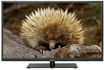 "Palsonic 39"" Full HD Widescreen DLED-LCD Television for $333 @ BINGLEE"