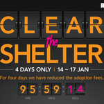 $50 Dogs, $200 Puppies, $30 Cats, $30 Rabbits, etc. at RSPCA VIC (4 Days Only)