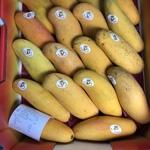 [VIC] Maha Chanok Mangoes $12 a Tray @ Dandenong Plaza Fruit Shop