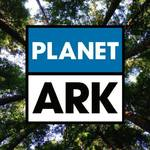 Win a D'arcy Surfboards Handmade Surfboard from Planet Ark