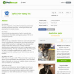 [WA] Free Sterilised, Microchipped, & Vaccinated Cat Adoption - (Appropriately Treated Rescue Animals) @ SAFE Avon Valley