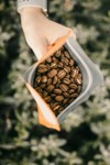 Fresh Roasted Single Origin Specialty Coffee Bean Sampler 2x 230g Delivered $20 (Save $14.50) @ Melbourne Chocolate & Coffee