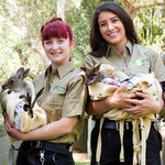 [Sydney] Save up to 45% off Featherdale Wildlife Tickets