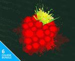 Complete Raspberry Pi 3 Training Bundle (91% off) - US $19 (AU $25) - Stacksocial.com