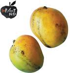 [NSW] Imperfect Mangoes $1.38ea ($2.75/kg) @ Harris Farm Markets