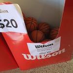 [VIC] Wilson Evolution Indoor Game Basketball $15 (RRP $79.99) @ Amer Sports Moorabbin