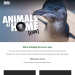 Free Live Stream of Melbourne Zoo Animals & Free Virtual Zoo Lockdown Lessons from Taronga Zoo
