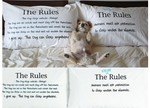 The Rules! Fun Dog Related Pillow Cases - $39.95 + $6.90 Shipping - SAVE $6