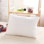 Mulberry Silk Travel Pillow Set, 30% off, USD $70 Including Shipping @ Lily Silk