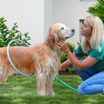 Pet Washer 360 Dog Cat Shower Kit $10 Delivered @ Fullmark