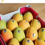 [NSW] 1 Tray of Kingston Pride Mangoes $20 @ Harris Farm Markets
