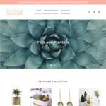 10% off Sitewide - Designer Pots, Planters and Terrariums at Lush Little Jungle