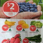 $2 Blueberries 13/9-19/9 [VIC/NSW/ACT], Folding Bike $149, Instant up Tent 4P $129 23/9 @ ALDI