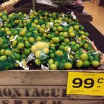 Lemon & Lime 6 Pack Bag $0.98 / Pacific Oysters $4 1/2 Dozen @ Woolworths Ashfield NSW