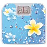 Bathroom Scale - Frangipani Design (Blue) - $12.90 Delivered (%70 off)
