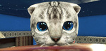 [Android] Cat Simulator Kitty Craft Pro Edition Free (was $1.49) @ Google Play Store