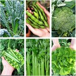 Veggie Seed Pack (6 Varieties) + Bonus Cauliflower - $10 Delivered (Was $20) @ Veggie Garden Seeds