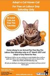 Free Adoption for Adult Cats on Saturday 4 March 2017 - Cat Haven WA
