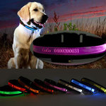 Laser Engraved Name LED Lights Dog Pet Collar Only $15.99 FREE SHIP @ Matchless Store