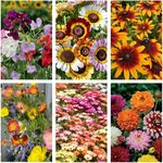 Rainbow Flower Seed Pack (6 Varieties) + Bonus Snapdragon Seeds, $12 Posted (Normally $21) @ Veggie Garden Seeds