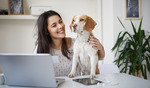 Get a $80 Woolworths eGift Card for New Pet Insurance Policies + Price Beat Promise for Similar Policies
