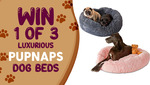Win 1 of 3 Pupnaps Calming Dog Beds Worth $129 from Seven Network
