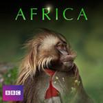 "iTunes - BBC Doco ""Africa"" Episode 1 ""Kalahari"" - Free Episode HD/SD"