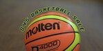 Molten GMX, GNX, D4000 Basketballs $45 Delivered @ Molten Australia