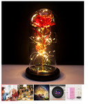 HEXUP Rose Flower in Glass Dome with LED String Lights $27.08 & Free Delivery @ Ofoshop