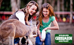 Currumbin Wildlife Sanctuary, Gold Coast - Entry for $19 Normally $49