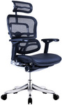 Ergohuman V2 Plus Elite Mesh & Leather Office Chair or Ergohuman Fit $549 + Shipping @ Temple And Webster