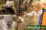 Alma Park Zoo, Brisbane - Family Admission $39, normally $90