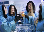 [VIC] Icebar in The Atrium at Fed Square $35 Per Person (Save $14 Per Person) @ Backpacker Deals