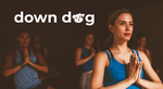 33% off 'Down Dog' Yoga and Exercise Subscription ($11.99/Month or $59.99/Annual)