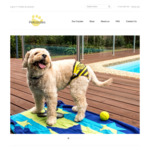 Swimmers for Your Dog $14.95 Delivered (Normally $19.95) @ Petcozzies
